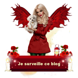 Protège blog rouge 2017 code inclus