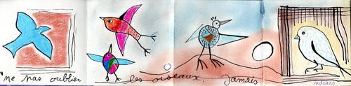 76 - nous voulons des oiseaux