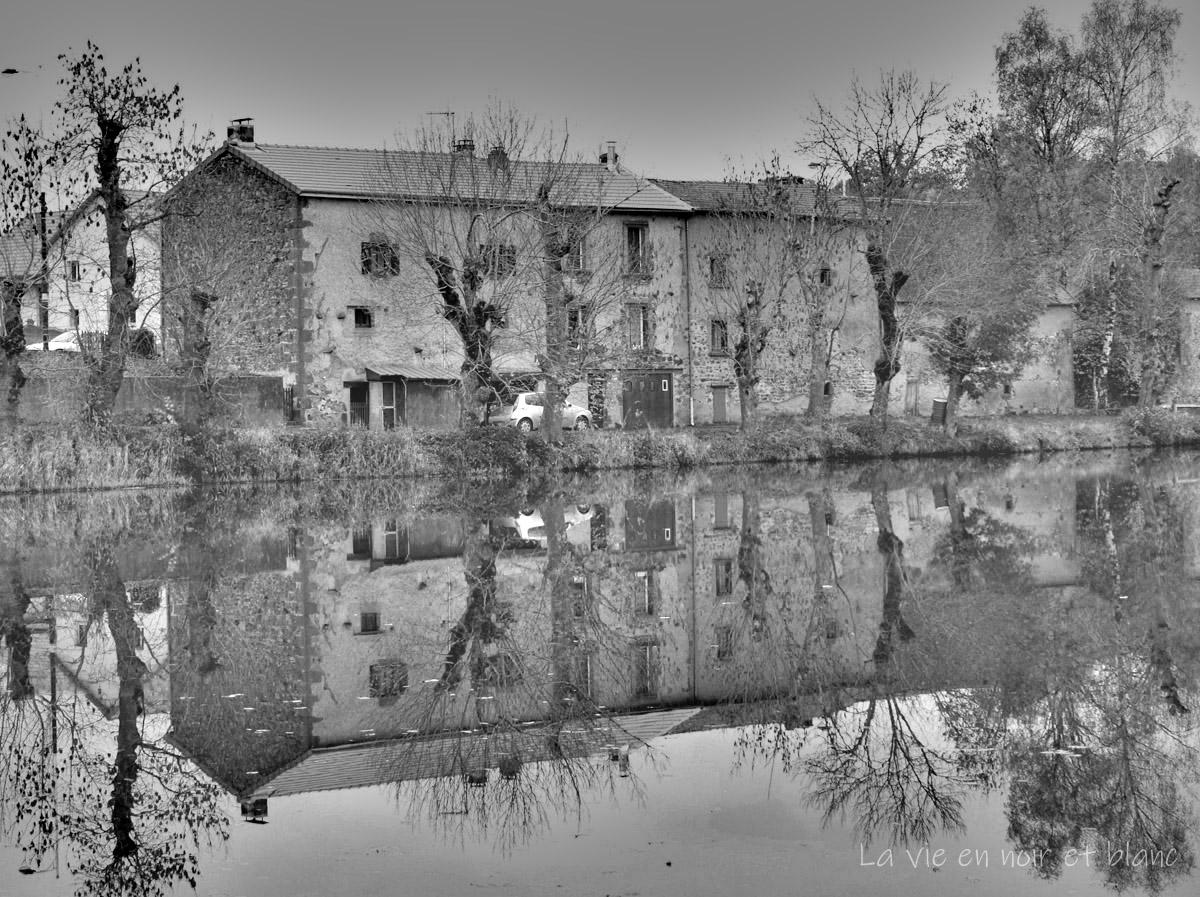 Reflets dans l'étang de Bromont- Lamotte (suite)