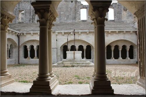 Abbaye de Montmajour cloître la galerie sud et le puits