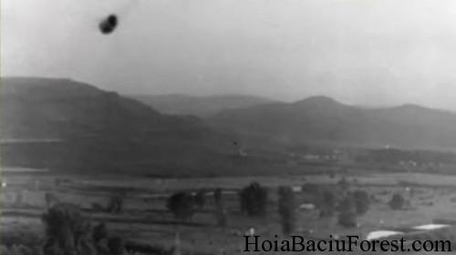 Les Secrets de la Forêt d'Hoia Baciu