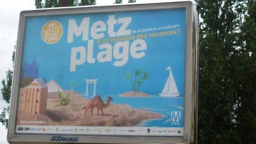 Dromadaire de Metz plage (5 septembre 2011)