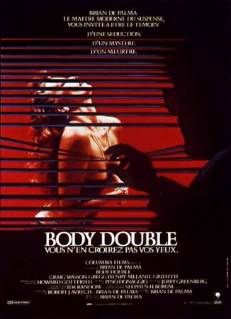 00785348_photo_affiche_body_double