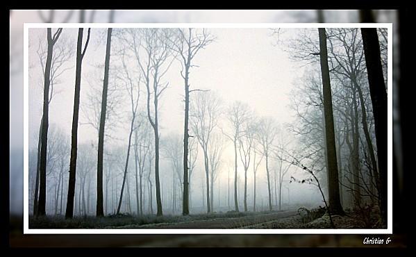 2012-01-13_31.JPG