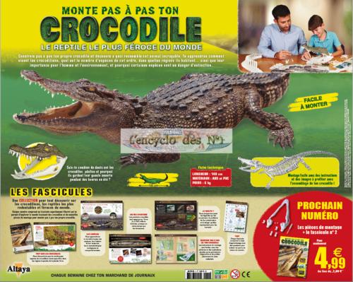 N° 1 Monte pas à pas ton crocodile - Test