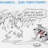PICS DE BURCQ
