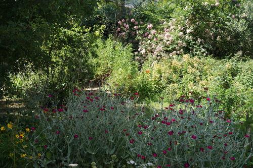 Instants nature de Juin au Jardin