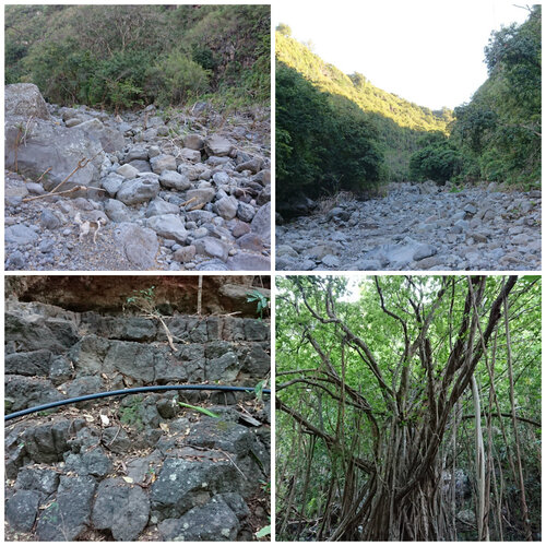 La remontée de la Ravine Barrage (RANDONNÉE)