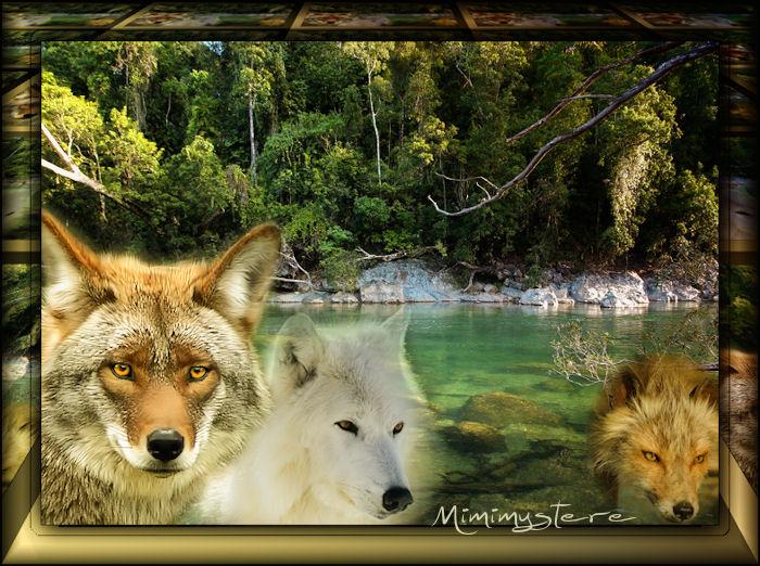 Fraîche-Loups
