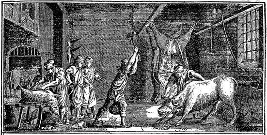 Encyclopédie de Diderot et d'Alembert - Boucher