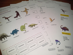 Les dinosaures : activités pour le cycle 2 - Génération 5
