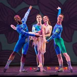 dance ballet the magic flute ballet