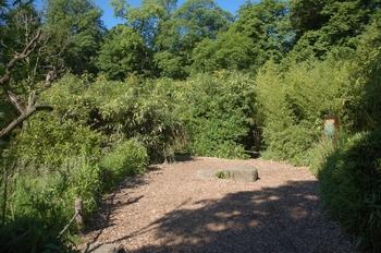 Zoo Duisburg 2012 595
