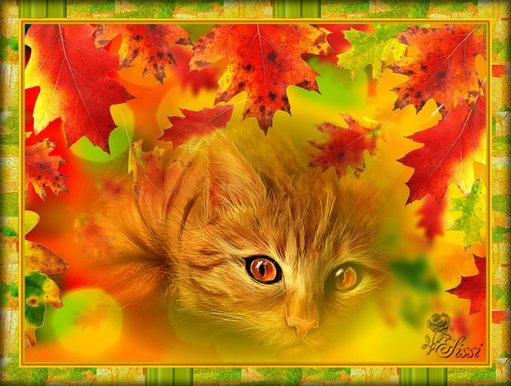 AUTOMNE CHACHAT