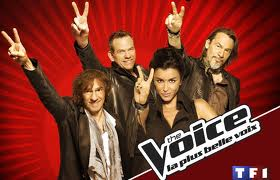 the voice vs le plus grand cabaret du monde