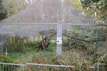 Zoo Osnabruck d50 2012 263