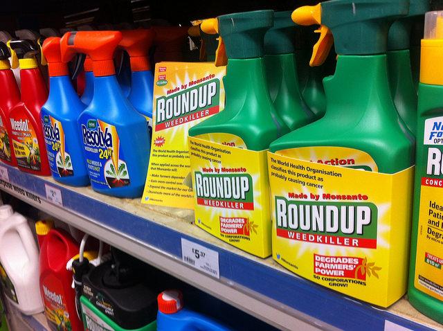 L'EFSA ignore des avertissements concernant le glyphosate