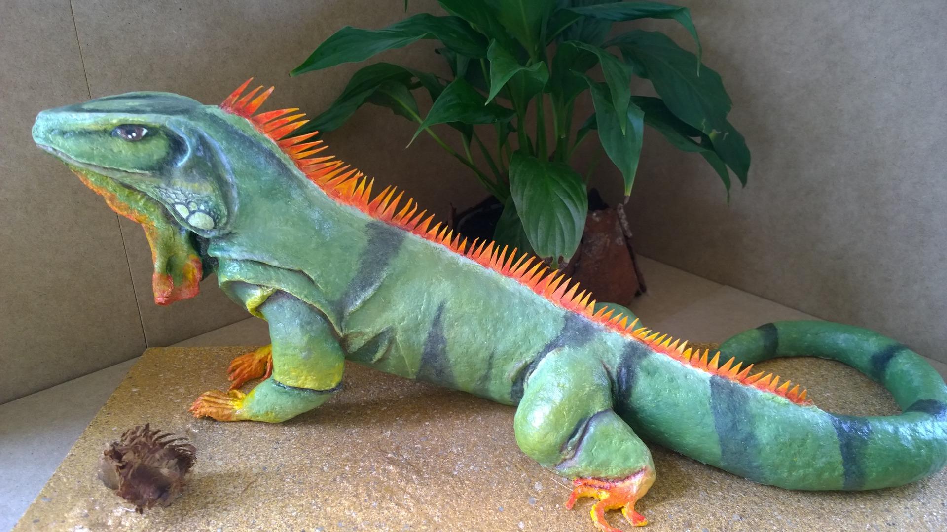 L Iguane Rastignac