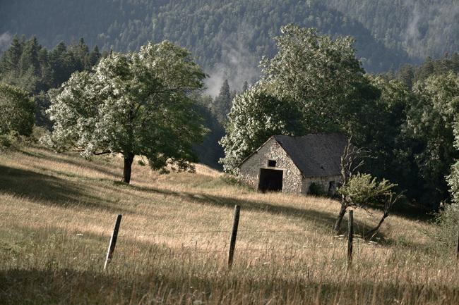 2014.08.03 Chatillon en Diois (Drôme, région Rhône-Alpes) 1