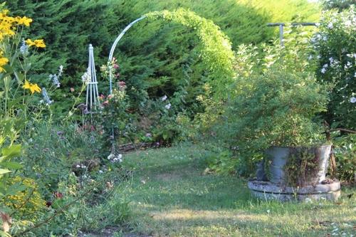 Le jardin en plein coeur de l'été (suite)
