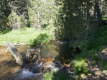 En remontant le ruisseau de Rocadells