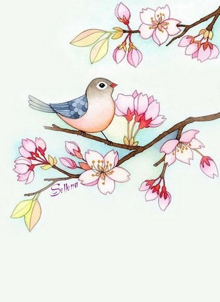 **Oiseaux**Papiers à lettres