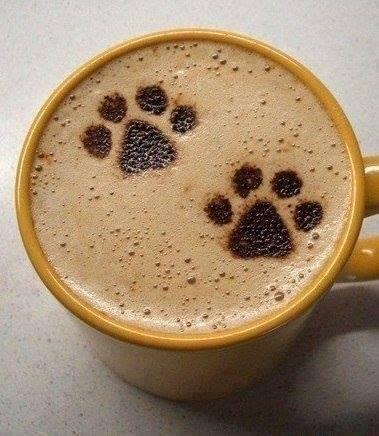 THES  CAFES  ou  AUTRES  2