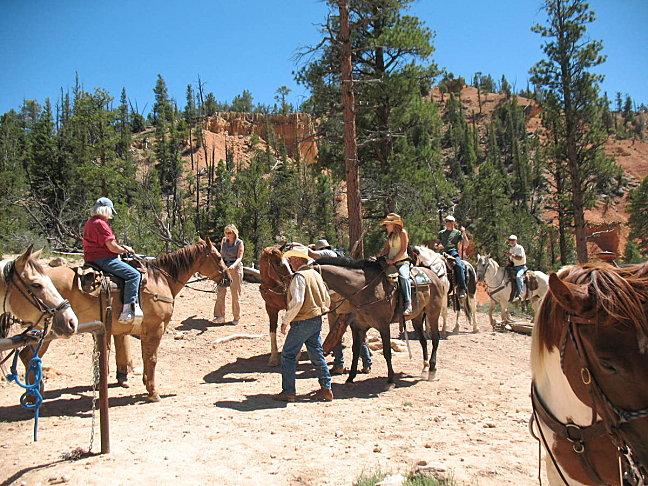 Horse-Back-090.jpg