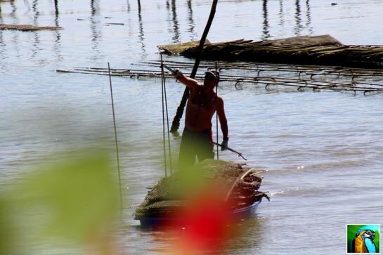 Tour du bassin d'Arcachon en bateau 2