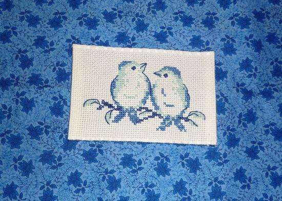 oiseaux Frimousse