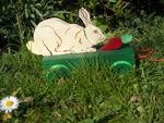 A050 Le lapin et la carotte