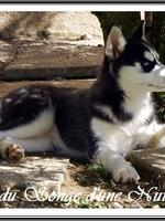 Ourika (presque 3 mois)