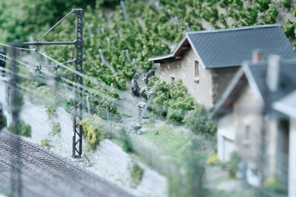 Rail-Expo-36