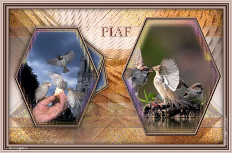 *** Piaf ***