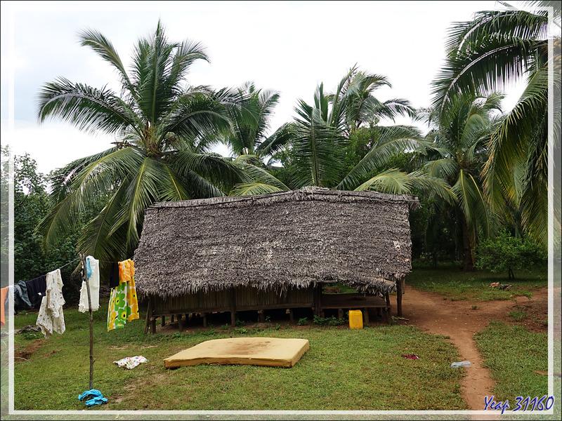 Promenade dans la forêt de Nosy Sakatia : Habitation typique avec cuisine séparée afin d'éviter un incendie destructeur - Madagascar