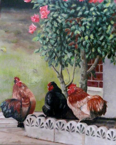 poules-et-coqs-ok.jpg