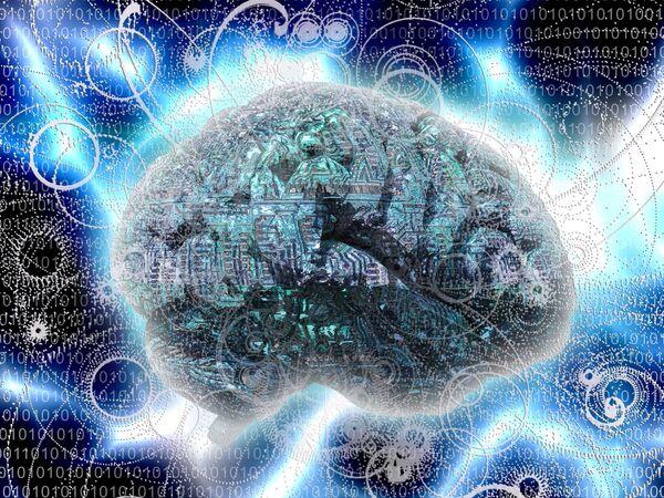 L'électrostimulation permet une meilleure plasticité cérébrale, d'où une amélioration de la mémoire et des apprentissages. © polygraphus, Shutterstock