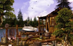 The lake house case