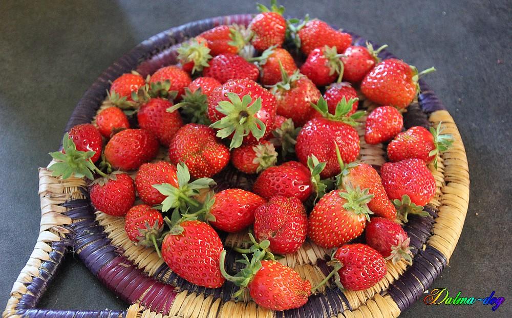 fraises de mon jardin ramassé ce matin!!!