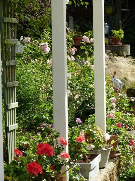 le jardin d'Eliane