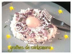 Graines de carbonara