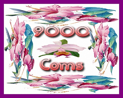 9000.gif