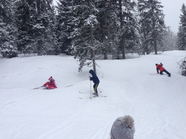 Ski de fond 04/03 - The end