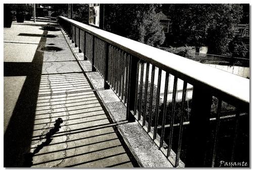 Street Photography (V) bis