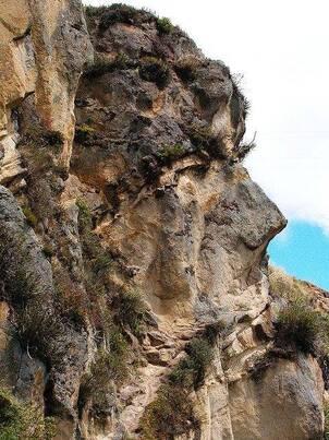 Sculptures de Marcahuasi du Pérou