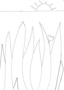 herbes duncan lucasm