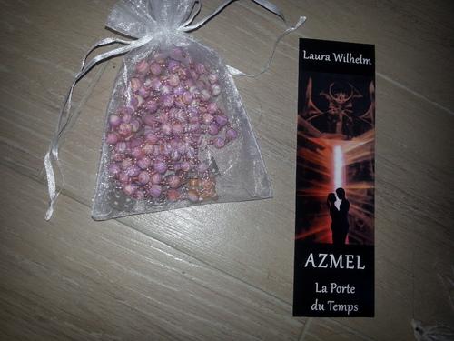 """Concours chez Azmel """"La porte du temps"""""""