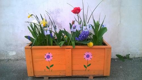 Des jardinières superbement fleuries !