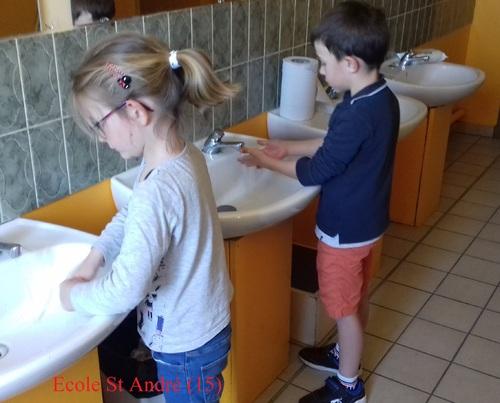 Lavons-nous les mains avec les animaux
