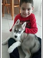 Louska (2,5 mois)